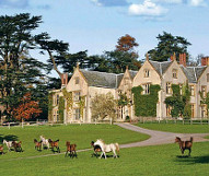 Combe House - Devon featured venue thumbnail